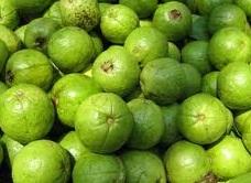 guava8a